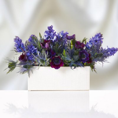 Premium Blue Flowers in Ceramic Container